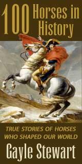 www.100horsesinhistory.com
