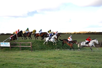 Killinick_Harriers_Point_to_Point_Open_Banks_Race