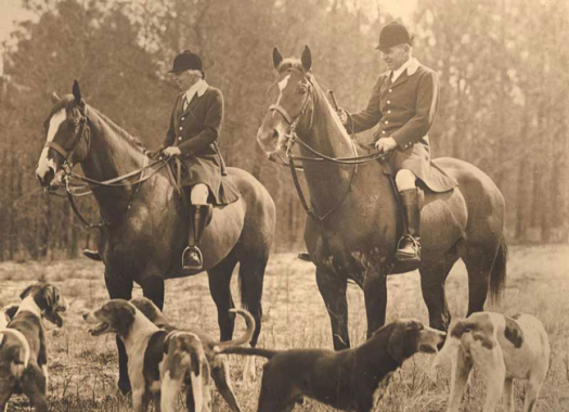 louise and thomas hitchcock.aiken hounds