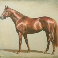 Aragorn, winner of Breeders Cup Mile by Charles Church
