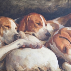 Four Hounds Asleep by Charles Church