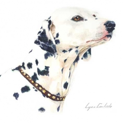 Dalmation - Pokie