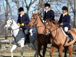 Piedmont Fox Hounds 2015