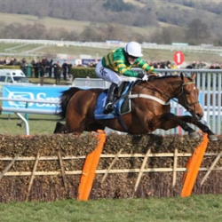Binocular – last year's Champion Hurdle winner trained by Nicky Henderson, who trains for HM The Queen, and ridden by the Champion Jockey AP McCoy
