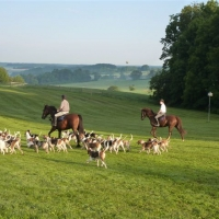 Mr. Stewart's Cheshire Foxhounds