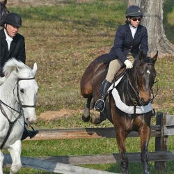 Elkridge-Harford/Green Spring Joint Meet Dec. '12: Blythe Miller Davies (won hunt cup 2011, on the right of board fence)