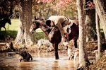 Huntsman Todd Kern watering hounds