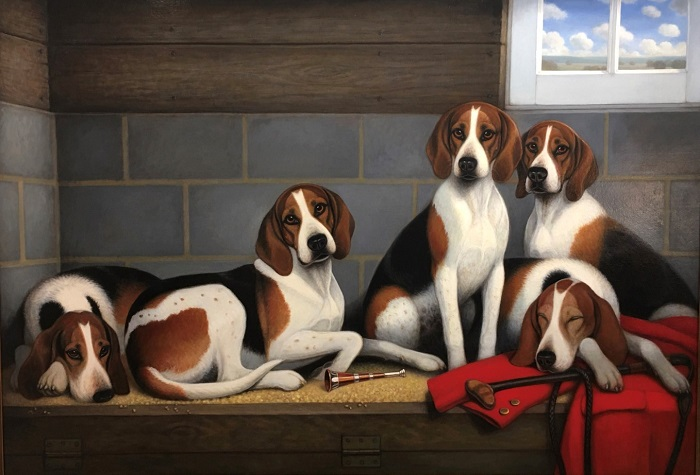 foxhounds in a kennel.christine merrill