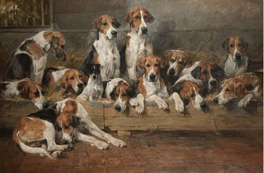 new forest foxhounds.emms