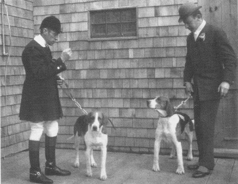 higginson and cotesworth with hounds