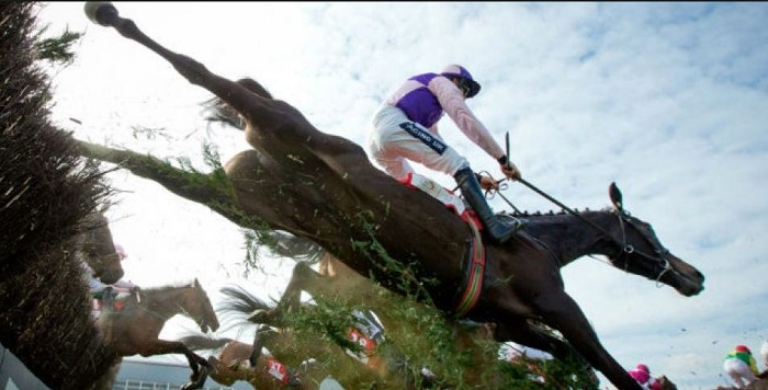 irish steeplechase