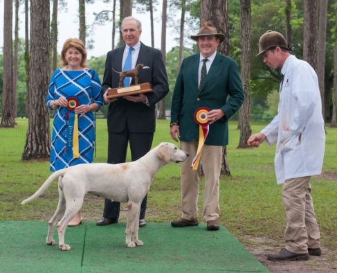 Southern Hound Show Kicks Off the Season