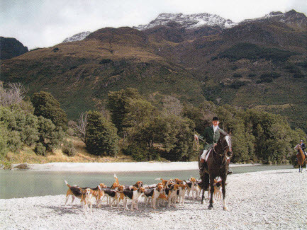 central otago hunt.nz