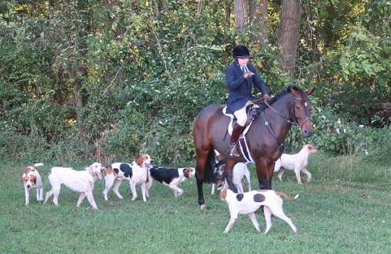 cheshire.magner foxhounds.barb smith