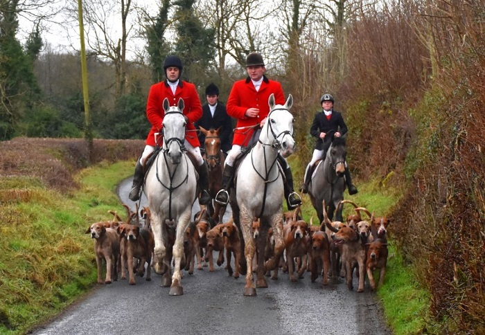 westmeath hounds and staff.mullins