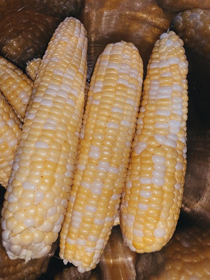 wilkoski.corn