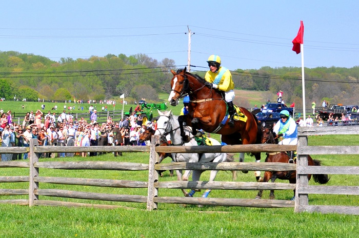 Mark Beecher riding the winner Professor Maxwell of the Maryland Hunt Cup without stirrups over 13th Fence which is 4 foot 9 inches