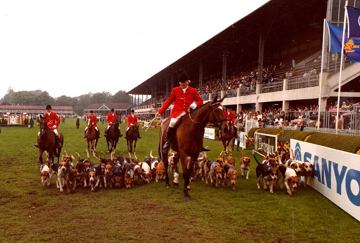 Michael Dempsey master and huntsman of the Galway Blazers Hounds parading twenty two and a half couple of hounds at the Dublin Horse Show in 1983.mullins