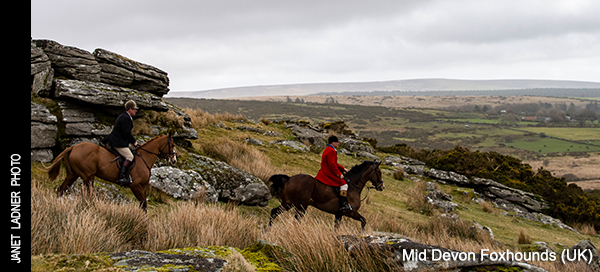 Fox Hunting Magazine: Foxhunting Life with Horse and Hound